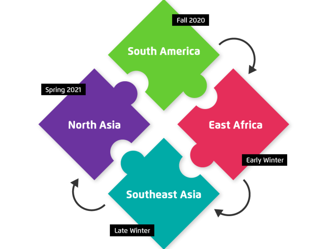 An infographic showing the structure of our gap semester abroad program modules.